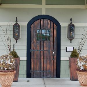 Doorcontrol Pneumatic Door
